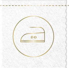 ironing icon@2x